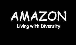 一般社団法人アマゾン資料館
